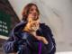 A Street Cat Named Bob (Shaw Organisation)