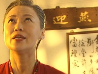 "Tianlan (Xiang Yun) in ""The Little Nyonya"". (Toggle)"