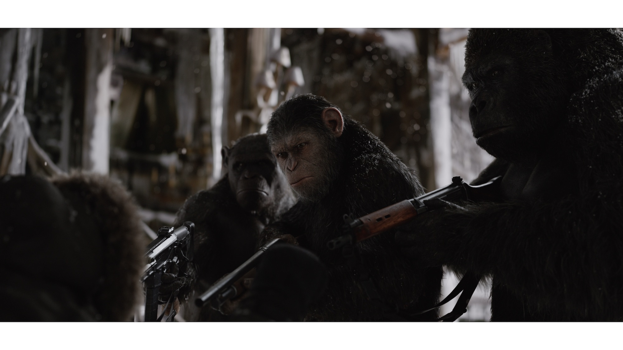 """War for the Planet of the Apes"" (Twentieth Century Fox)"