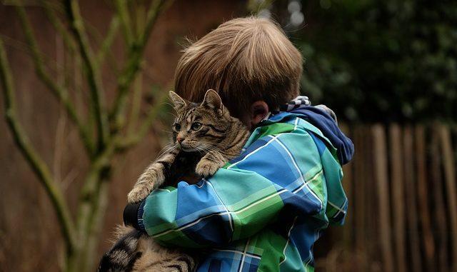 A reassuring hug. (Pixabay)