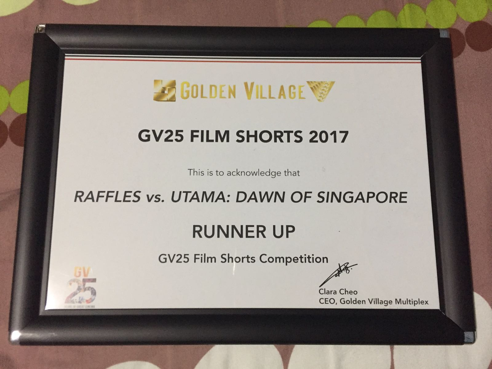 Runner Up for the GV25 Film Shorts Competition