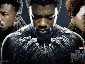 Black Panther. (Black Panther Facebook Page)